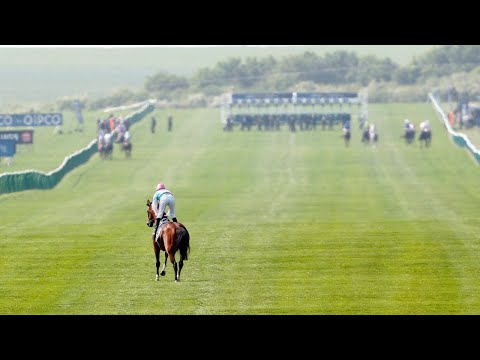 2011 Qipco 2000 Guineas