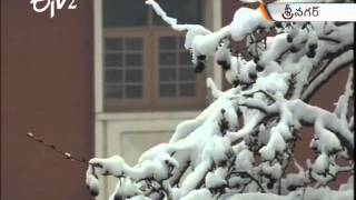 Snow Fall In Srinagar - ETV2INDIA