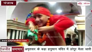 video : Amritsar के बड़ा Hanuman Mandir में लंगूर मेला जारी