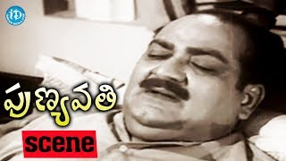 Punyavathi Movie Scenes - Sobhan Babu Worried About SV Ranga Rao's Health || Krishna Kumari || NTR - IDREAMMOVIES