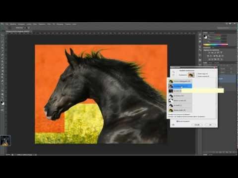 Corso Completo di Photoshop CS6: Migliora Bordo