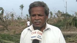 తిత్లీతుఫాన్ తో భారీగా నష్టపోయిన జీడీ రైతులు l RaitheRaju | CVR NEWS - CVRNEWSOFFICIAL