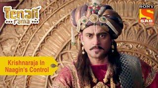 Your Favorite Character | Krishnaraja Is In Naagin's Control | Tenali Rama - SABTV