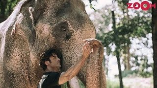 Vidyut Jammwal Shares His Anecdotes Shooting With Elephants| Bollywood News - ZOOMDEKHO