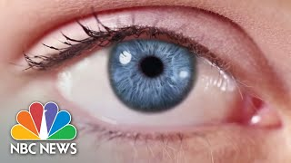Scientists Give Mice Night Vision. Here's What It Means For Humans | Mach | NBC News - NBCNEWS