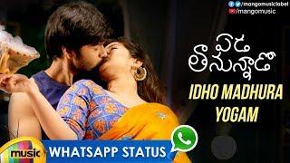 Best Love WhatsApp Status Video | Idho Madhura Yogam Song | Eda Thanunnado Movie Songs |Charan Arjun - MANGOMUSIC