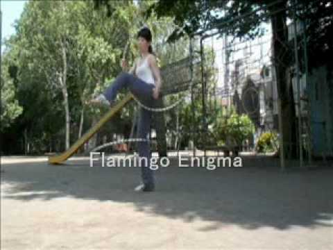 Hoop tricks:Flamingo Enigma