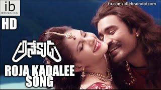 Dhanush's Anekudu Roja Kadalee song - idlebrain.com - IDLEBRAINLIVE