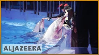 🇨🇳 Al Jazeera probe unveils rampant animal abuse in China | Al Jazeera English - ALJAZEERAENGLISH