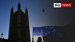 What will historians make of Brexit? - SKYNEWS