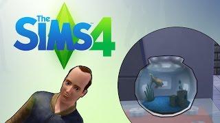 watch the youtube video The Sims 4 - The Adventures Of Borris - Borris' Goldfish! [8]