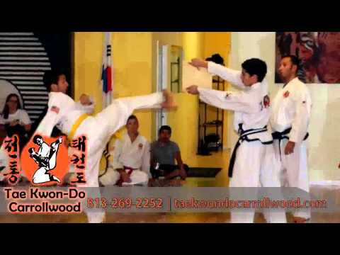 Tradition Tae Kwon Do Video   Martial Arts in Carrollwood