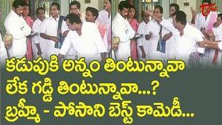 కడుపుకి అన్నం తింటున్నావా లేక గడ్డి తింటున్నావా..? | Brahmi And Posani Best Comedy Scenes | NavvulaT - NAVVULATV