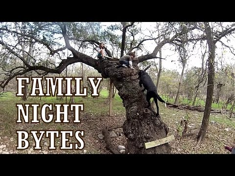 Family Night Bytes - December 22, 2014