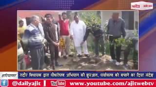 video : रादौर विधायक द्वारा पौधरोपण अभियान की शुरुआत, पर्यावरण को बचाने का दिया संदेश