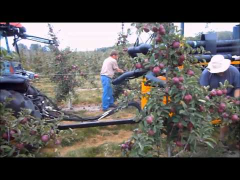 Phil Brown Welding - 2011 Vacuum Apple Harvester -KJEtz8ejPvw