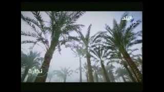 فيديو.. حمدي رزق بـ«الجلابية» وممتطيا «حمار» في برنامجه.. ويصف معاناة الفلاحين