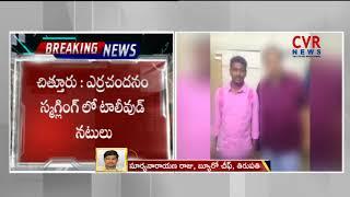 ఎర్రచందనం కేసులో అరెస్ట్: టాలీవుడ్ లింక్స్| Telugu Actor Caught in Red Sandalwood Smuggling|CVR News - CVRNEWSOFFICIAL