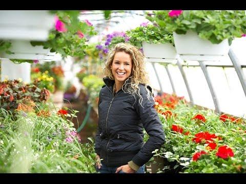 Successful Indoor Gardening