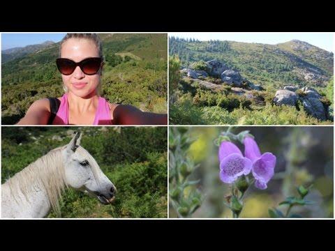 Vacances en Corse, Balade en Montagne & Animaux sauvages.