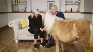 A Minihorse Surprise Proves Size Doesn't Always Matter - POPSUGARTV