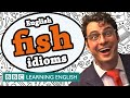 Fish Idioms - BBC Learning English (The Teacher)
