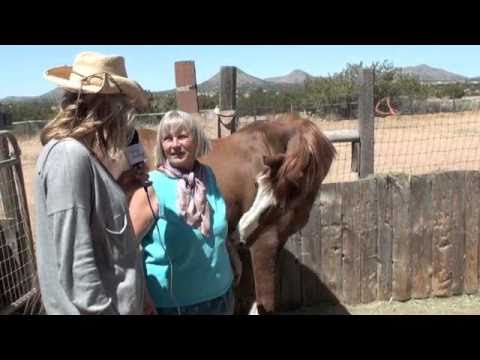 Meeting Kindred animals in New Mexico
