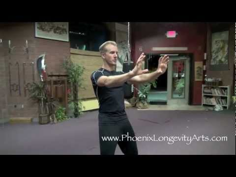 Chinese Qigong:  Bear