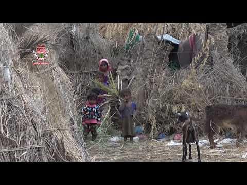 شاهد بالفيديو :  نازحين من مناطق متفرقة في الحديدة شردهم الحوثيين يحكون معاناتهم اليومية