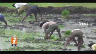 Farmers Starts Cultivation After Rains in Komaram Bheem district   iNews - INEWS