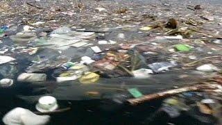 تلوث خليج «ريودي جانيرو» يهدد استضافتها للمسابقات الرياضية