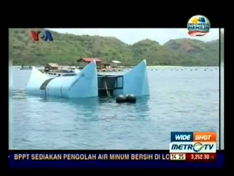 Pemenang Kompetisi GIST dari Indonesia (January 25, 2013) - Metro TV