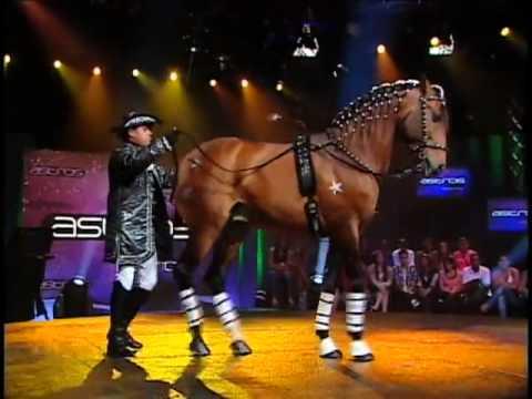 Astros - Adestrador de cavalos surpreende jurados com show