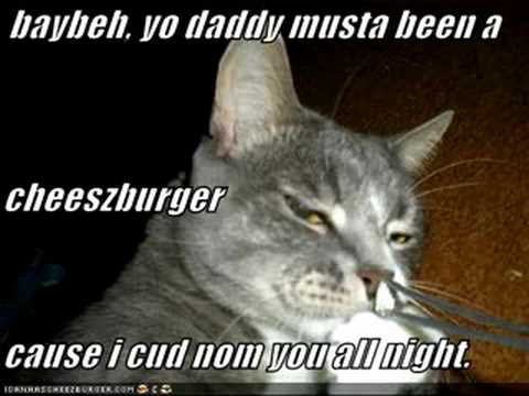 MY LOLCAT GOT FEATURED ON ICANHASCHEEZBURGER.COM!