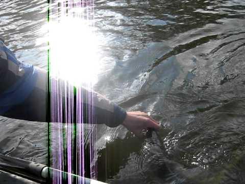 рыбалка с сергеем олехом