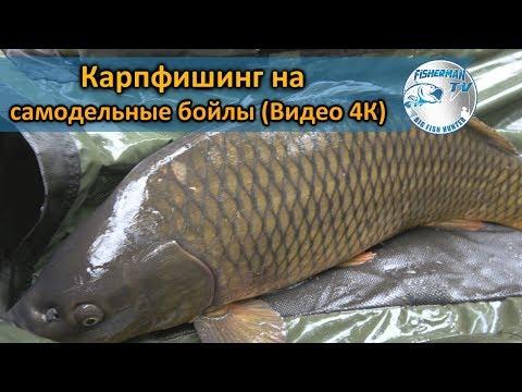 ловля карпа на бойлы в беларуси видео