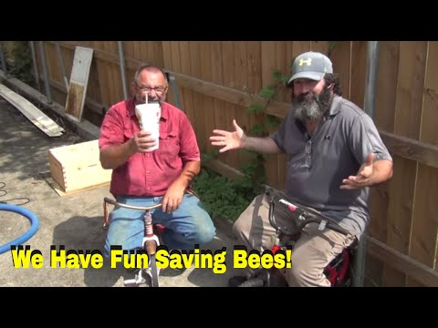 Crazy Beekeepers Rescue Bees From Chemical Plant!