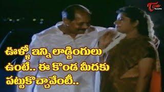 ఊళ్ళో ఇన్ని లాడ్జింగులు ఉంటే ఈ కొండమీదకు పట్టుకొచ్చావేంటీ.. | Telugu Movie Comedy Scenes | NvvulaTV - NAVVULATV