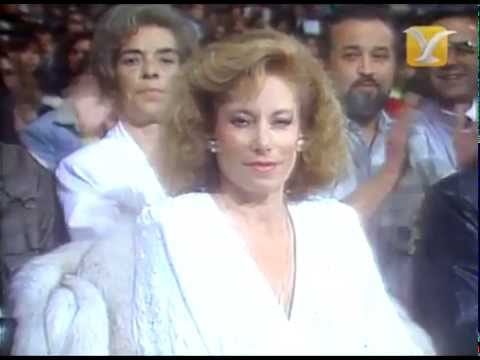 Festival de #ViñadelMar 1989, Jurado Folclórico