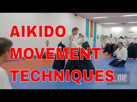 AIKIDO Movement Techniques Christian Tissier pt4