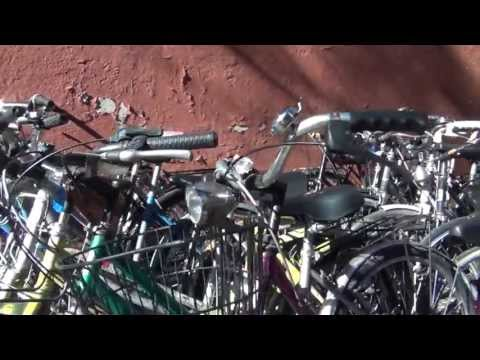 Asta di Biciclette - 49 edizione