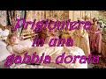 Chi Era Maria Antonietta? - Pazza Versailles