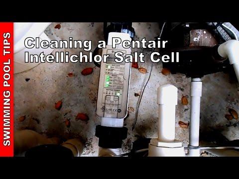 Cleaning a Pentair Intellichlor Salt Cell