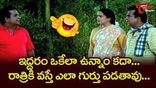 Vamshoddharakudu Movie Comedy Scenes Back to Back | Balakrishna, Brahmanandam | NavvulaTV - NAVVULATV