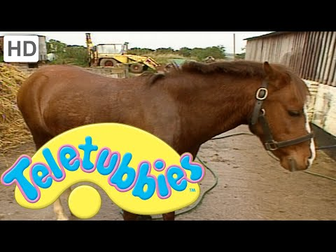 Teletubbies: Emily Washing the Pony - HD Video