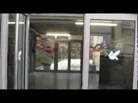 Escola La Vila Palamós - Jornada de Portes Obertes març 2014