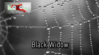 Royalty FreeRetro:Black Widow
