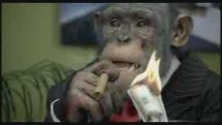 業績上昇中、猿だけの企業