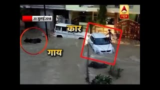 Madhya Pradesh: Life becomes difficult in Damoh due to water logging - ABPNEWSTV