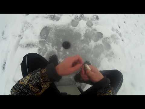 зимния рыбалка оскол
